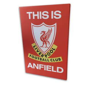 Liverpool Canvas Print 30x20 inches