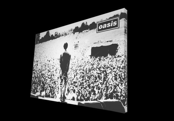 Oasis Canvas Print