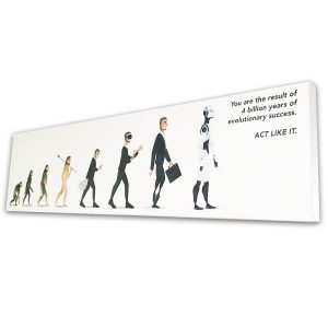 Evolution Canvas 40x10