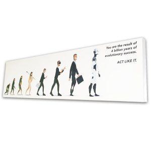 Evolution Canvas 40x10